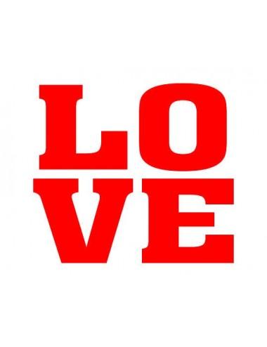 """Schoenstickers """"LOVE"""""""