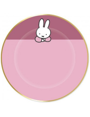Bordjes Nijntje roze (8st)